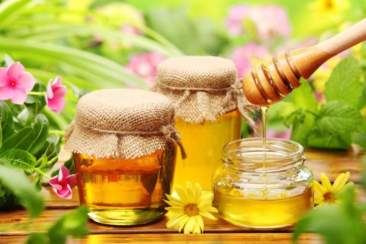 14 полезных свойств меда