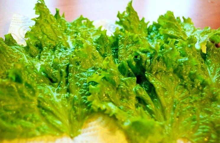 Листья салата - Кобб-салат