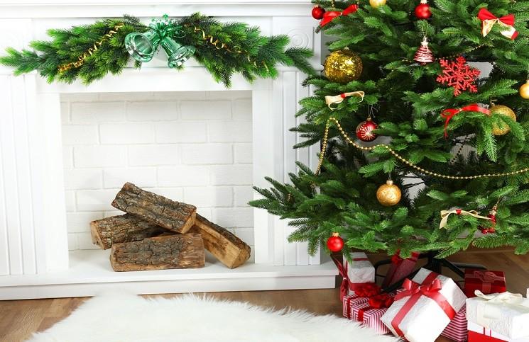 Как Правильно Выбрать Живую Новогоднюю Елку?