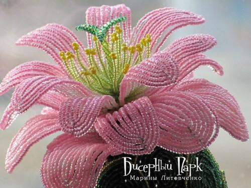 Кактус «Розовая мечта» по технике бисерного плетения. Часть 1