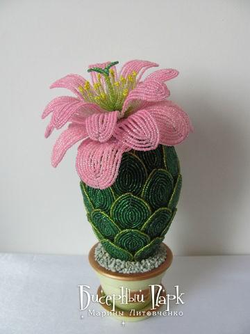 Кактус «Розовая мечта» по технике бисерного плетения. Часть 2