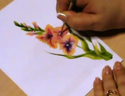 рисование гладиолуса
