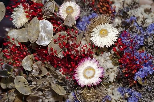 4 Метода Позволяющих Сохранить Великолепие Растений