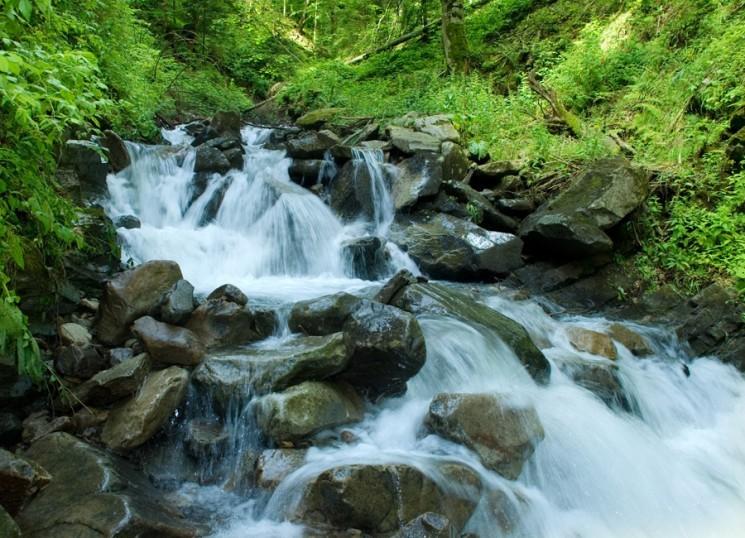5 знаменитых парков Украины