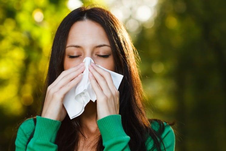8 важнейших правил жизни, если ты страдаешь аллергией на амброзию
