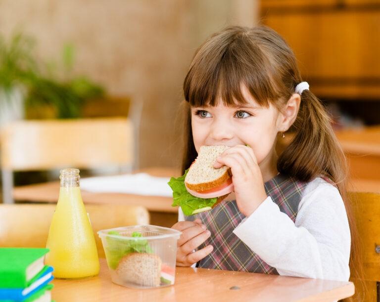 Как правильно кормить ребенка при отсутствии нормального питания в школе