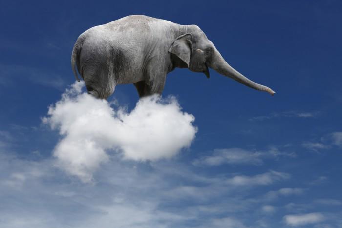 Слон плывет на облаках в небе