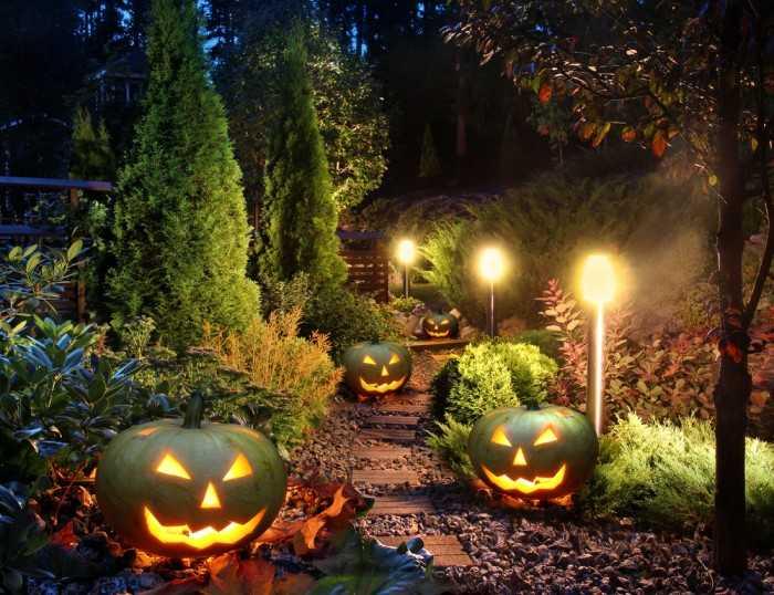 Тыквы-фонари на Хеллоуин посреди сада