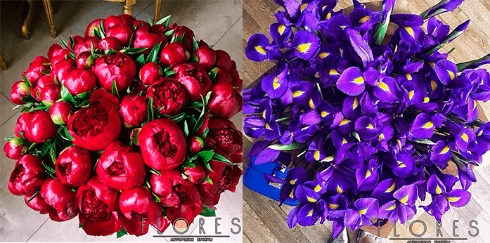 Цветы без упаковки