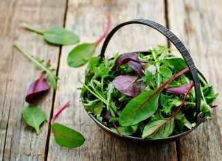 Пряная зелень для похудения