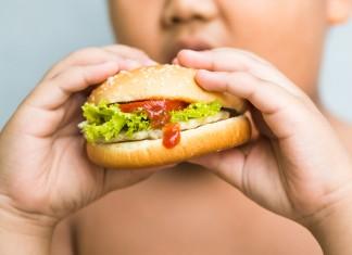 Ребенок ест сендвич