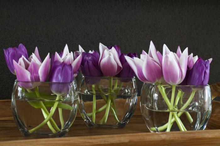 Фиолетовые тюльпаны в трех стеклянных вазах