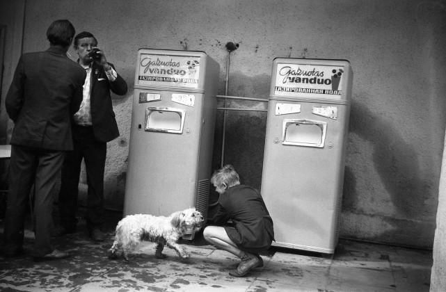 выставка фотографий Литвы