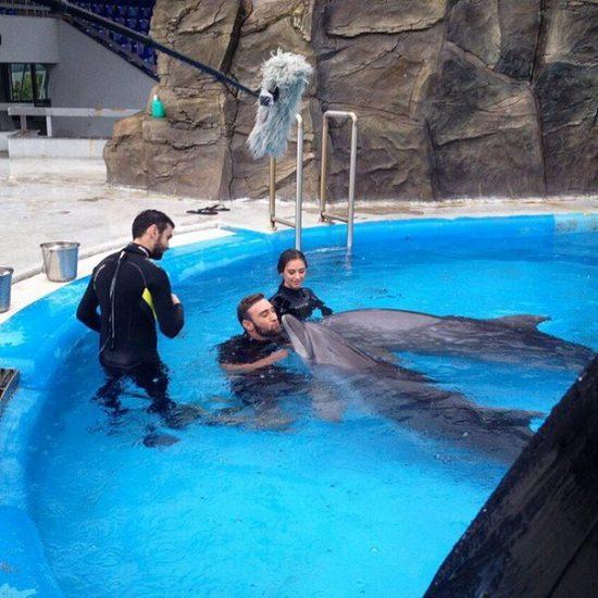 Иракли Макацария и Алена Лесык в бассейне с дельфинами