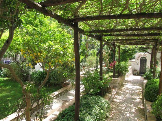Сад на острове Капри, Италия