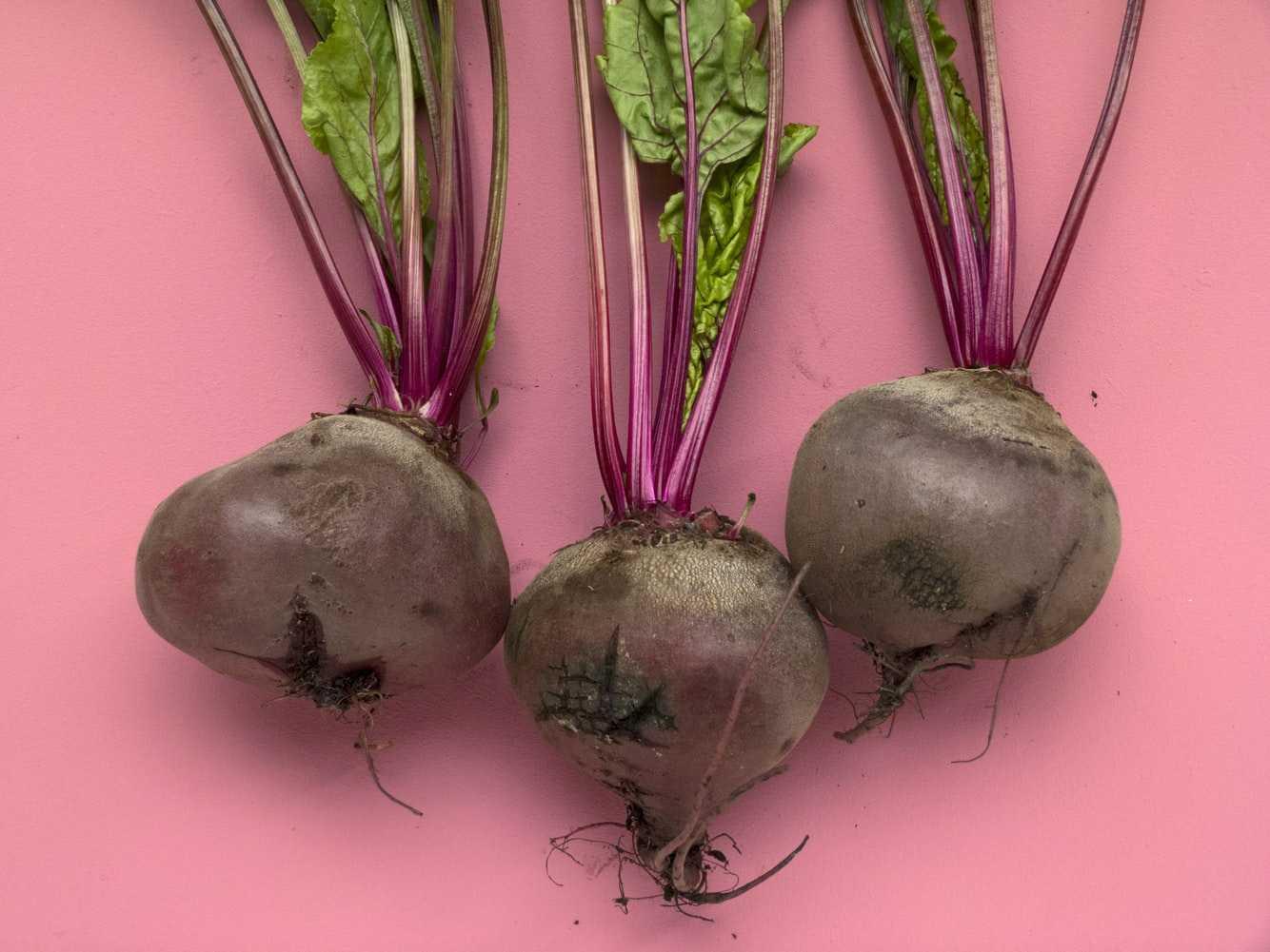Осенний рацион для здорового питания 9 лучших продуктов - Свекла