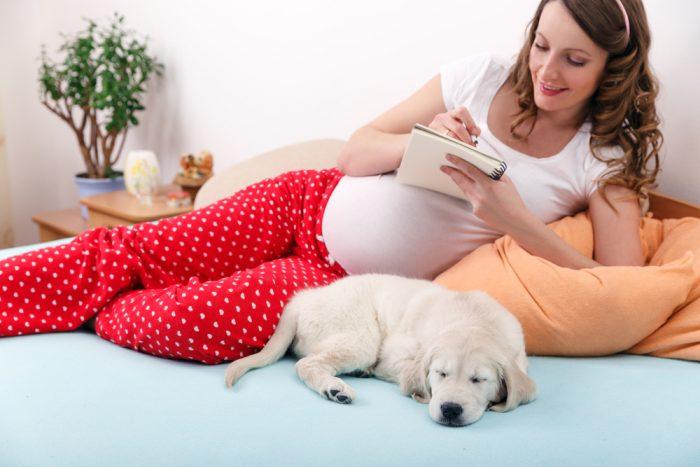 Беременная девушка на постеле с собакой делает запись