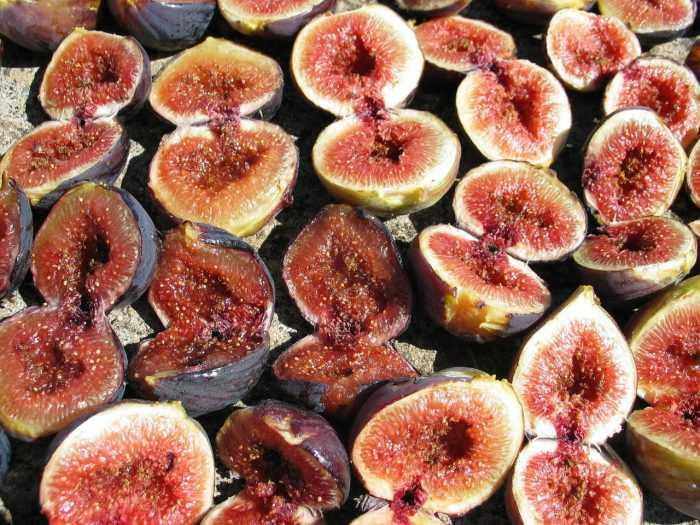 разрезанные плоды инжира