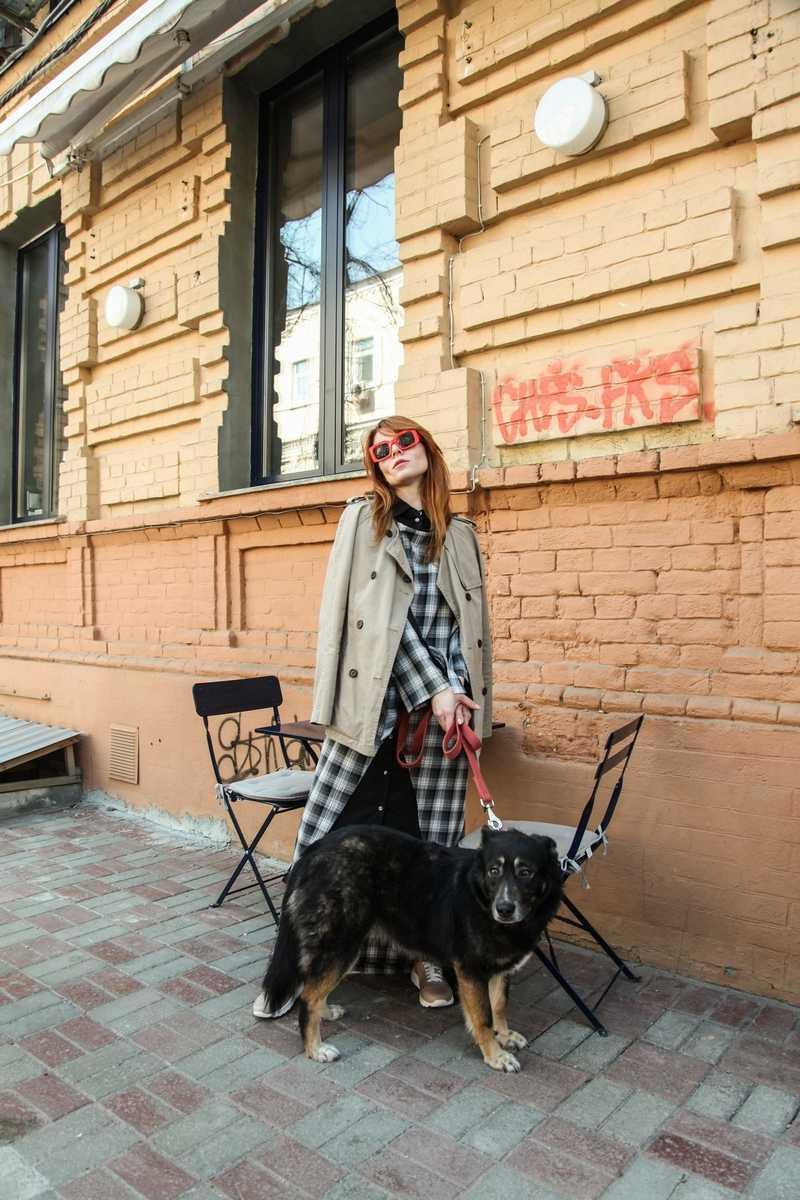 Украинский бренд SOLH поддержал социальный проект Хвостатый четверг 4