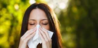 8 важливих правил життя, якщо ти страждаєш алергією на амброзію